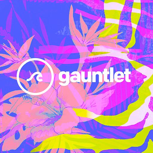 Gauntlet 2017