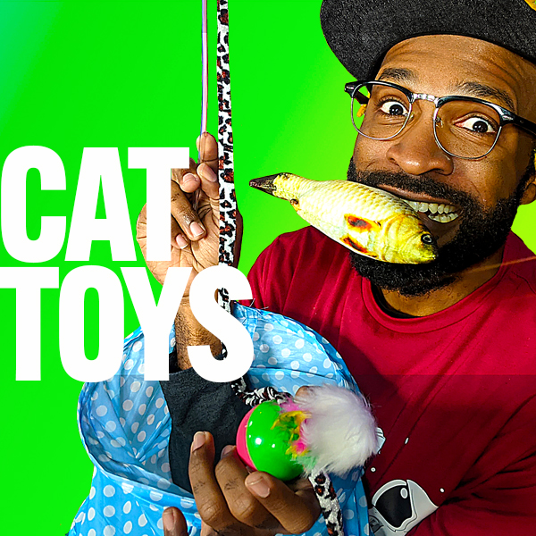 Loop Show Likes You: Cat Toys - Loop Show