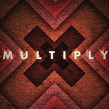 Multiply - 2010