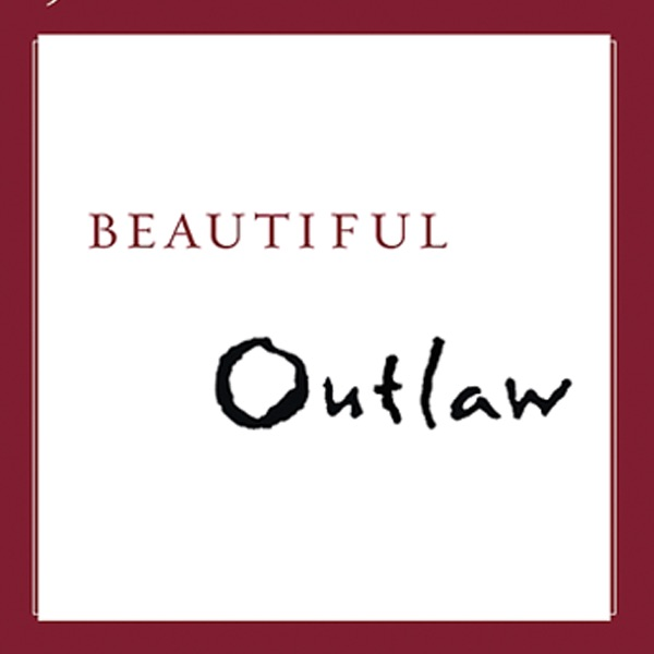 Beautiful Outlaw: Experiencing the Playful, Disruptive ...