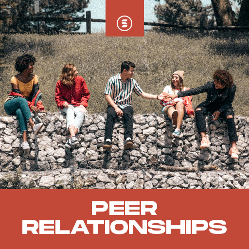 Peer Relationships - Switch