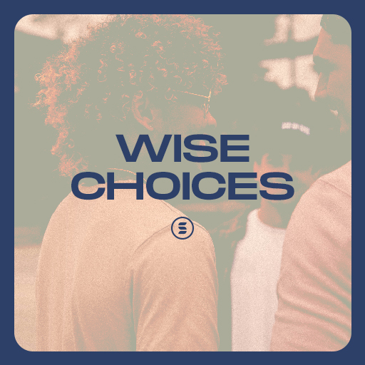 Wise Choices - Switch