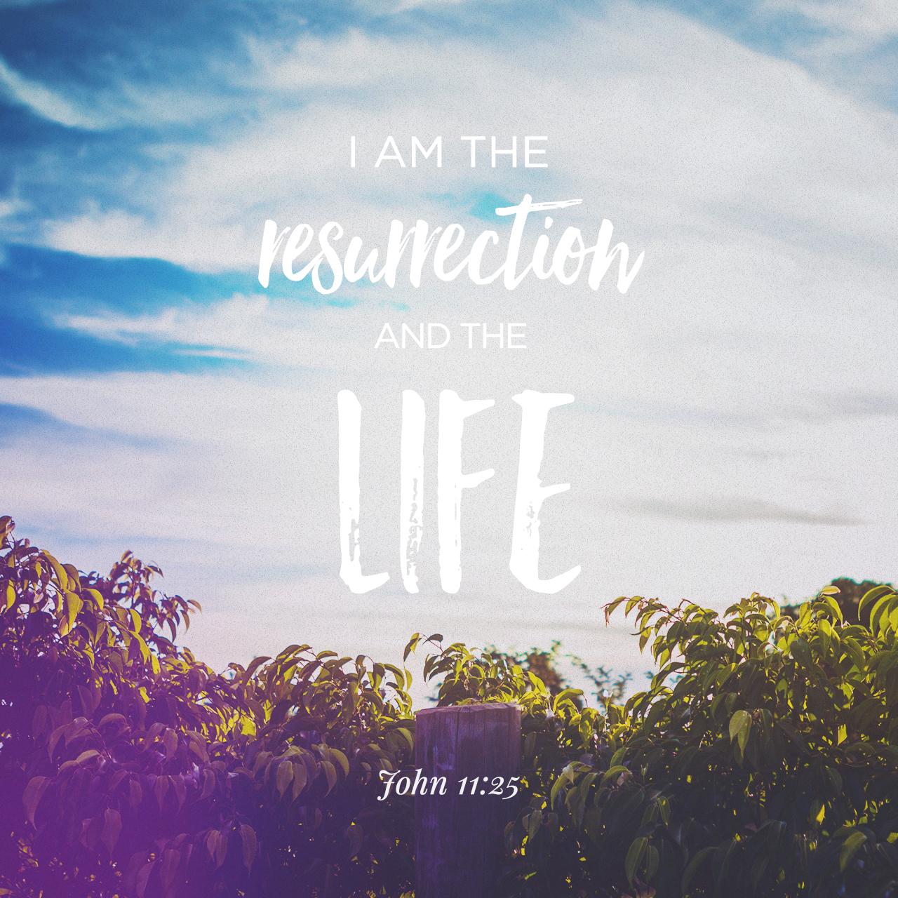 John 11:25
