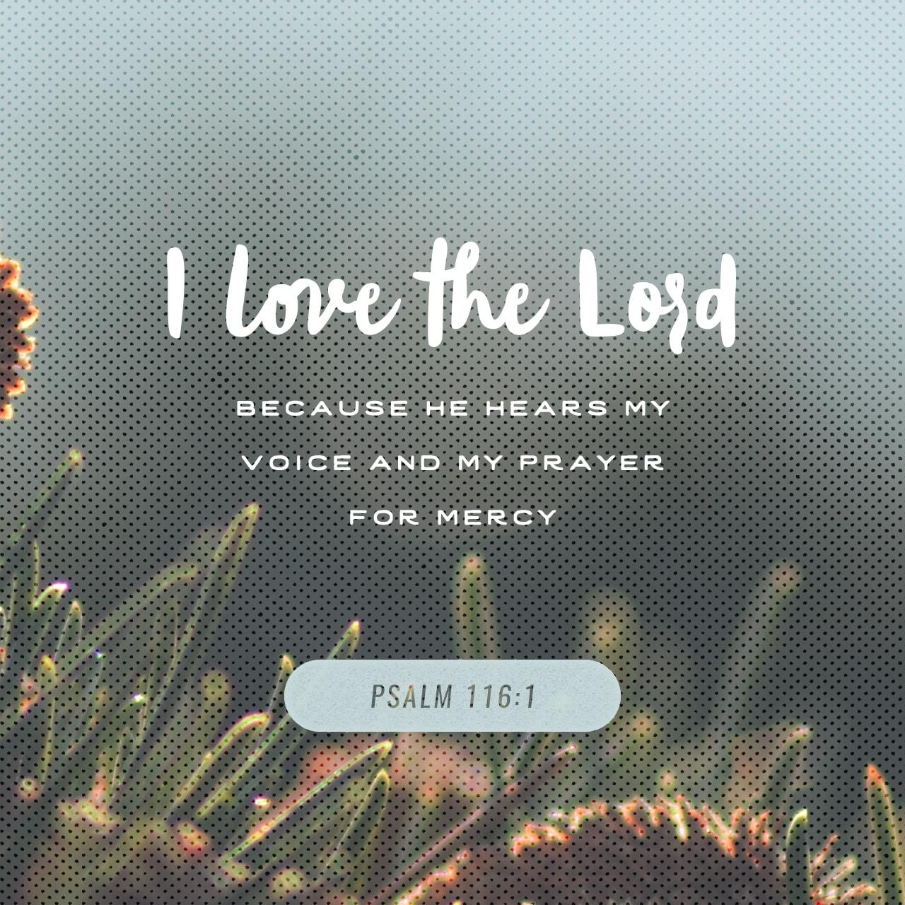 Psalm 116:1