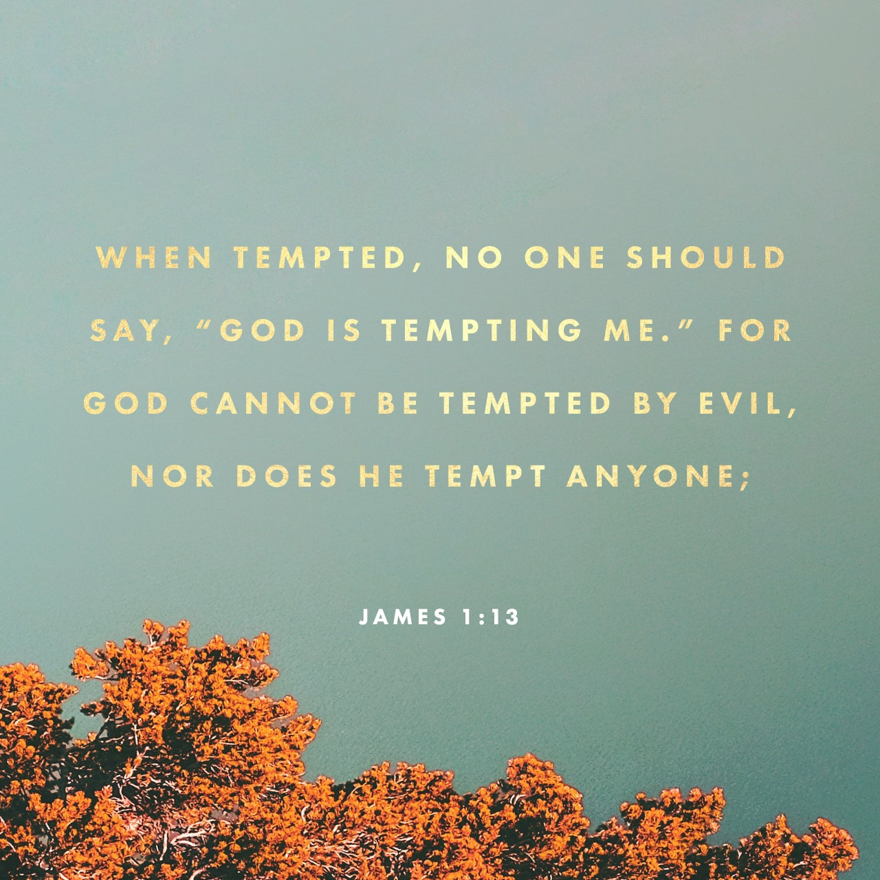 James 1:13