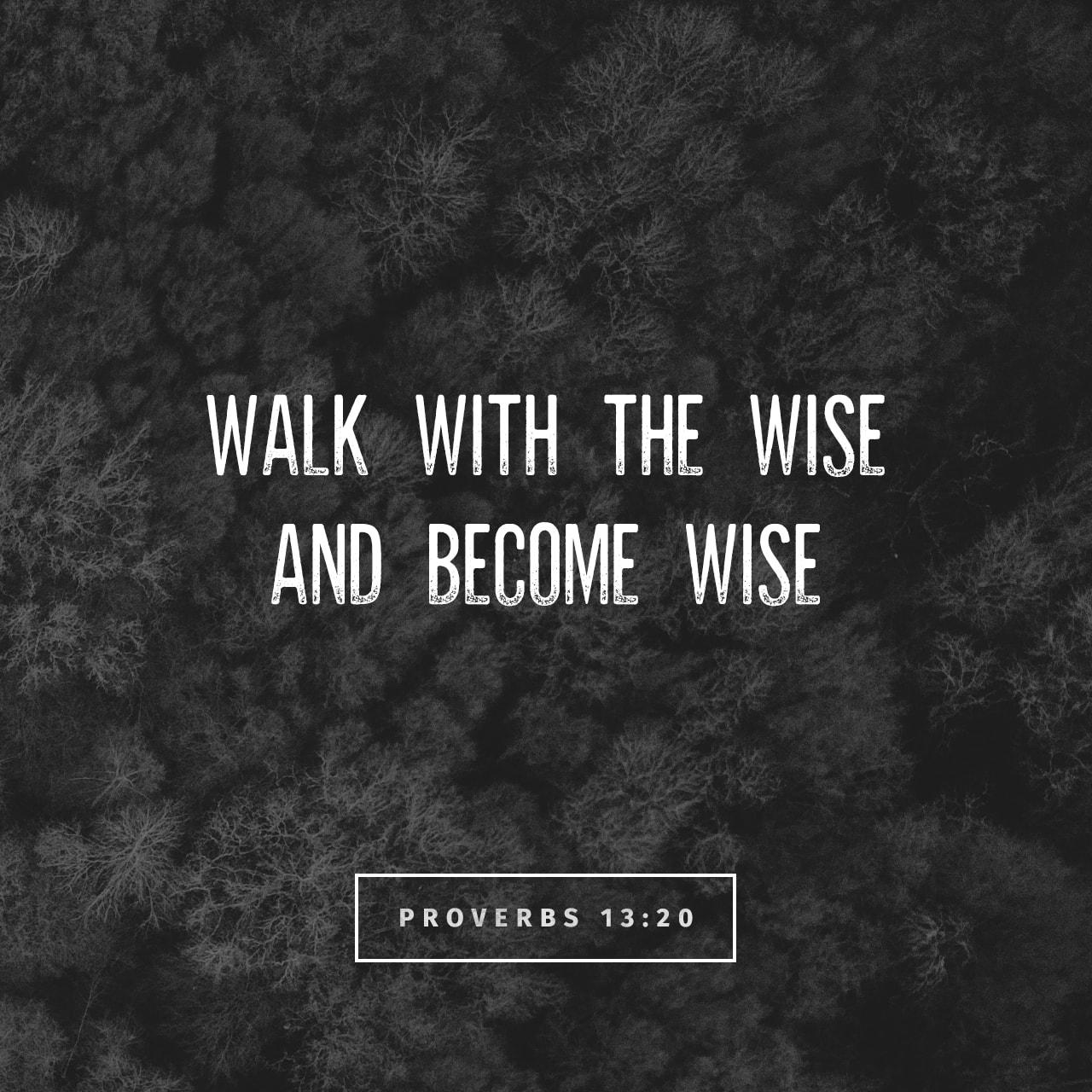 Proverbs 13:20