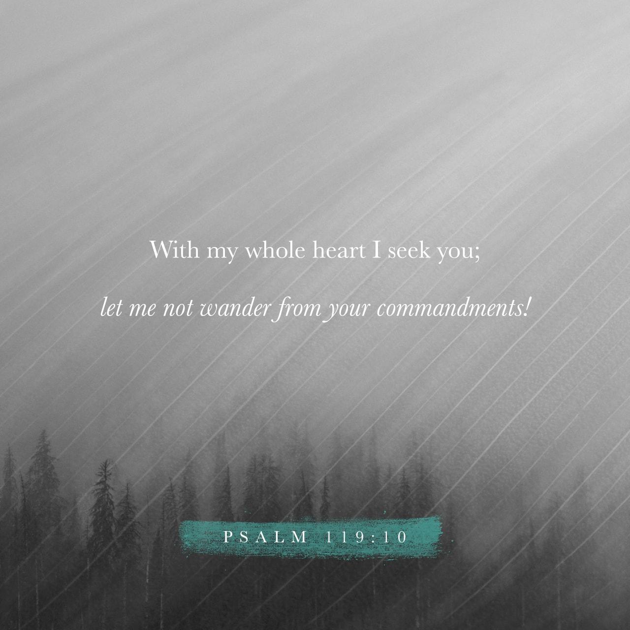 Psalm 119:10