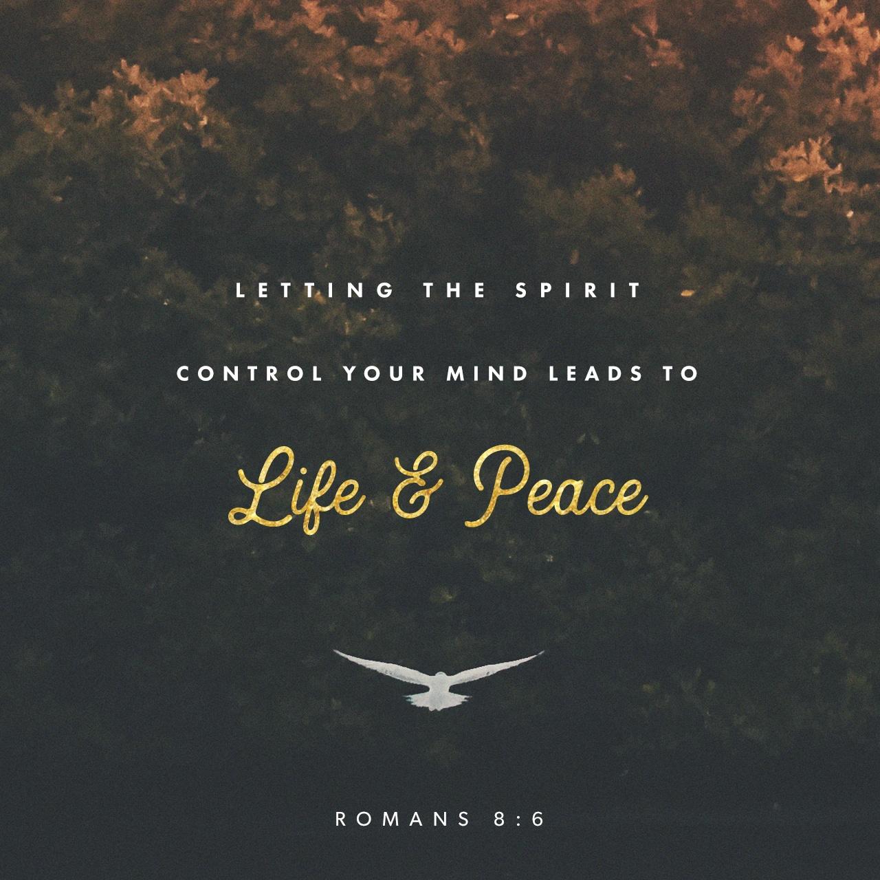 Romans 8:6-8