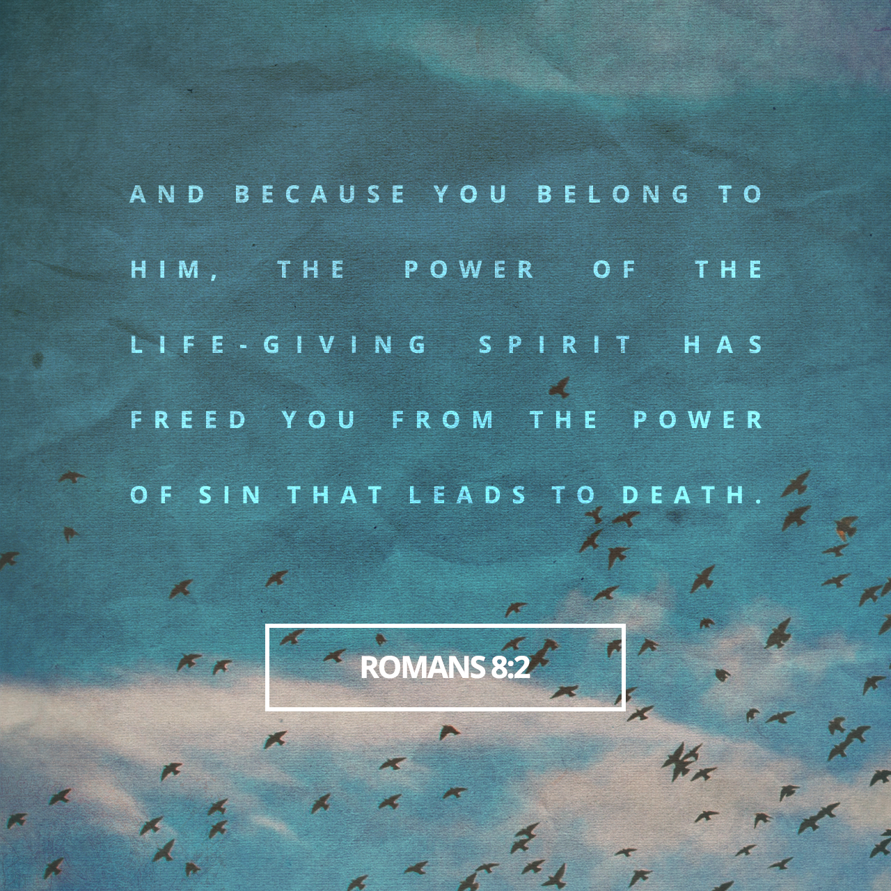 Romans 8:2