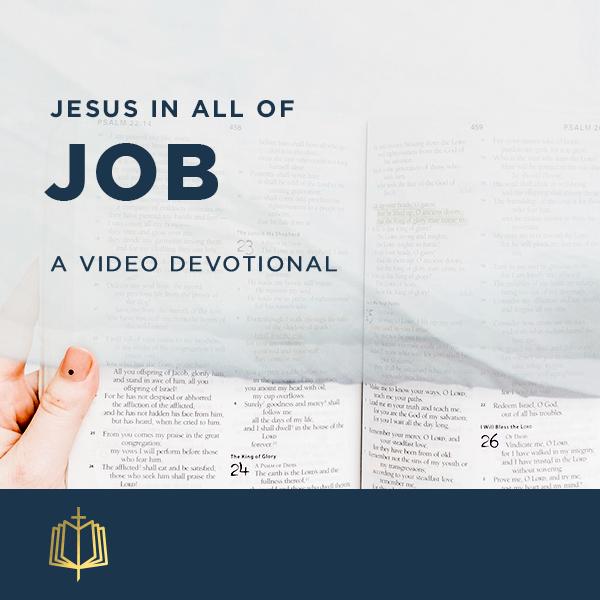 Jesus In All Of Job