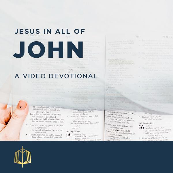 Jesus In All Of John