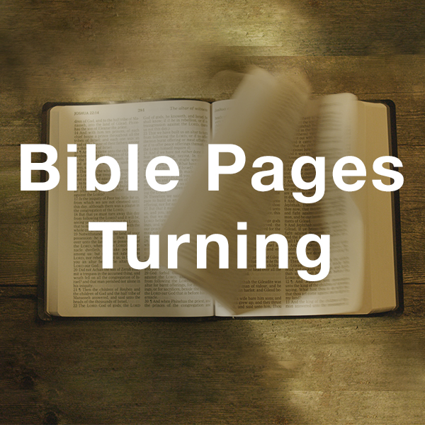 Stock Videography: Bible Pages Turning