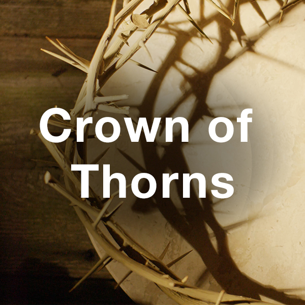 Stock Videography: Crown of Thorns