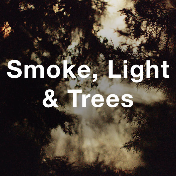 Stock Videography: Smoke, Light & Trees