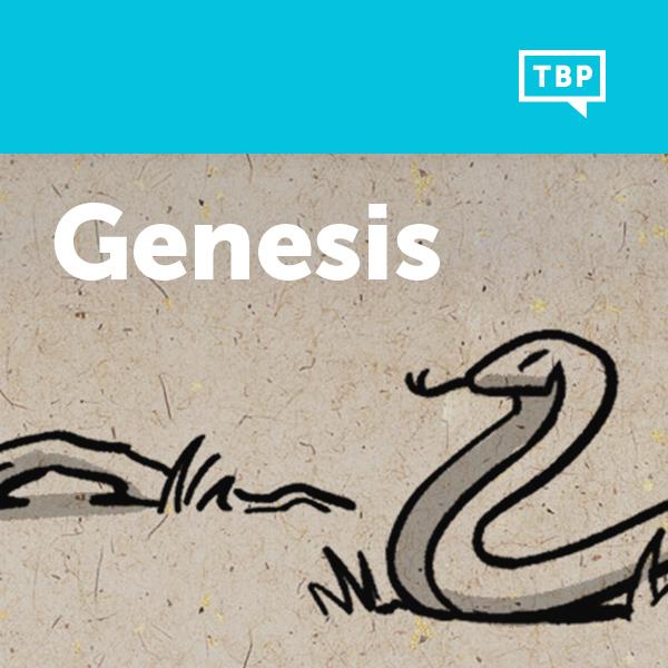 Read Scripture: Genesis