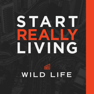 Wild Life Men's Event & Small Group Resources 2018