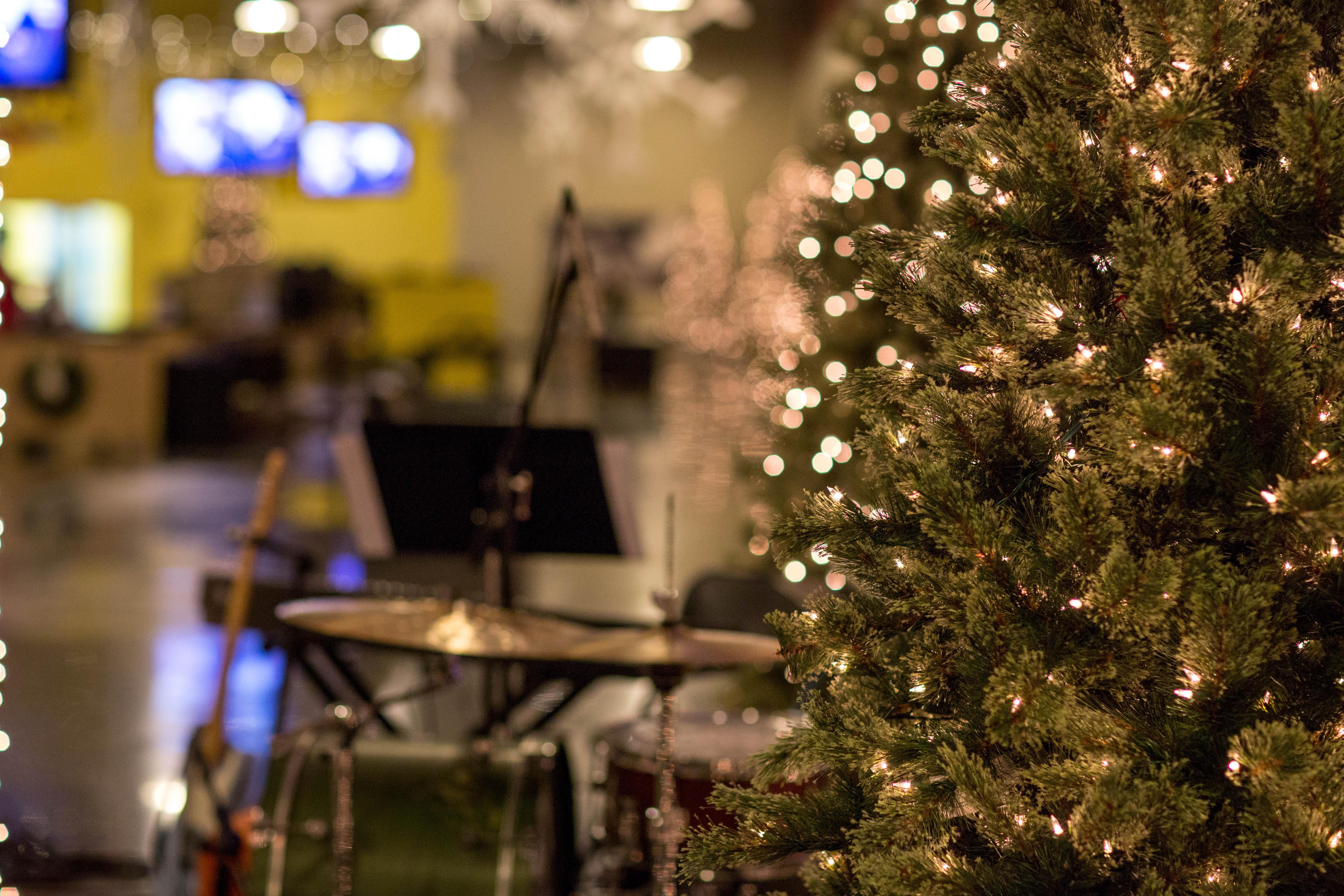 Christmas Tree 3 (JPG)