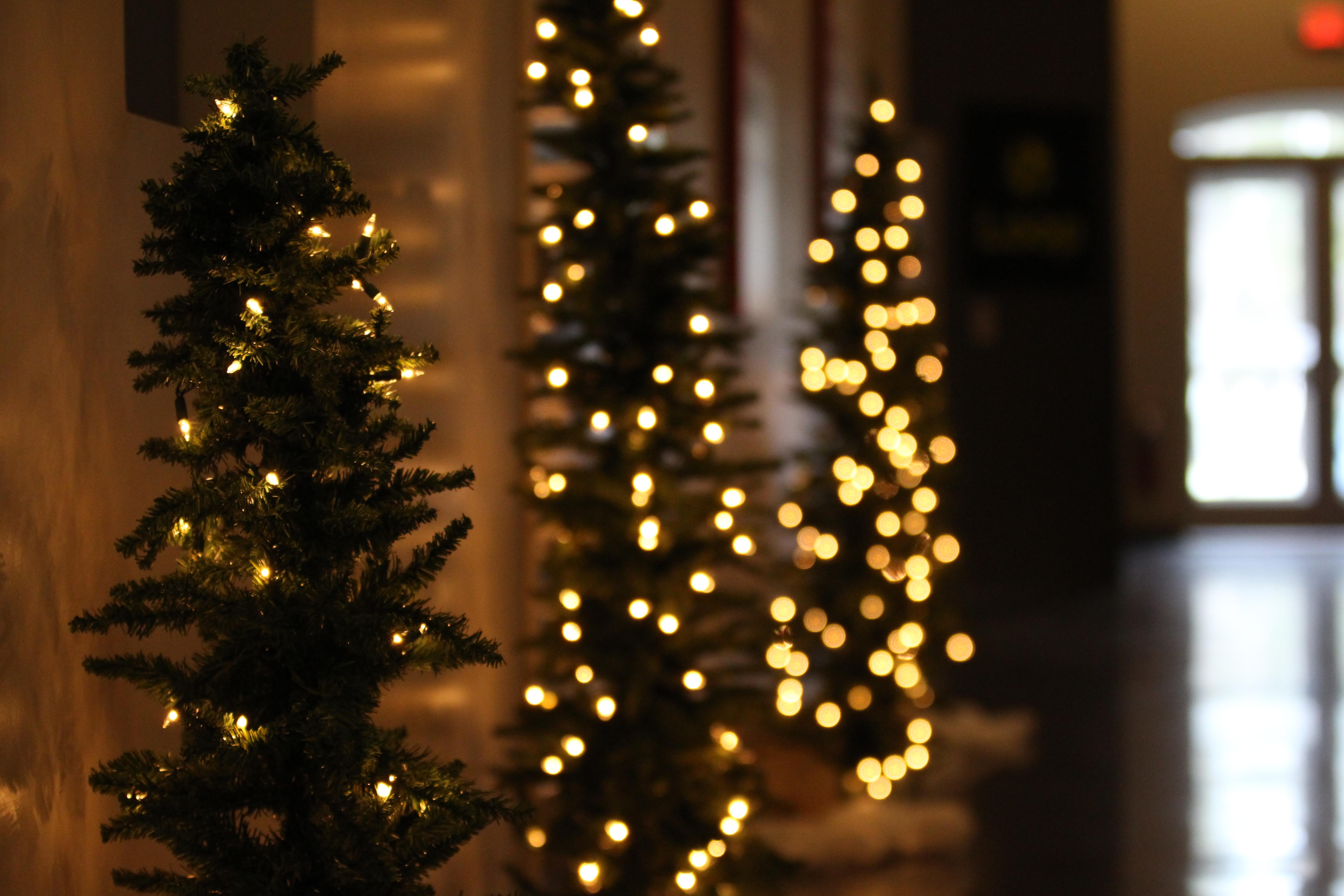 Christmas Tree 5 (JPG)
