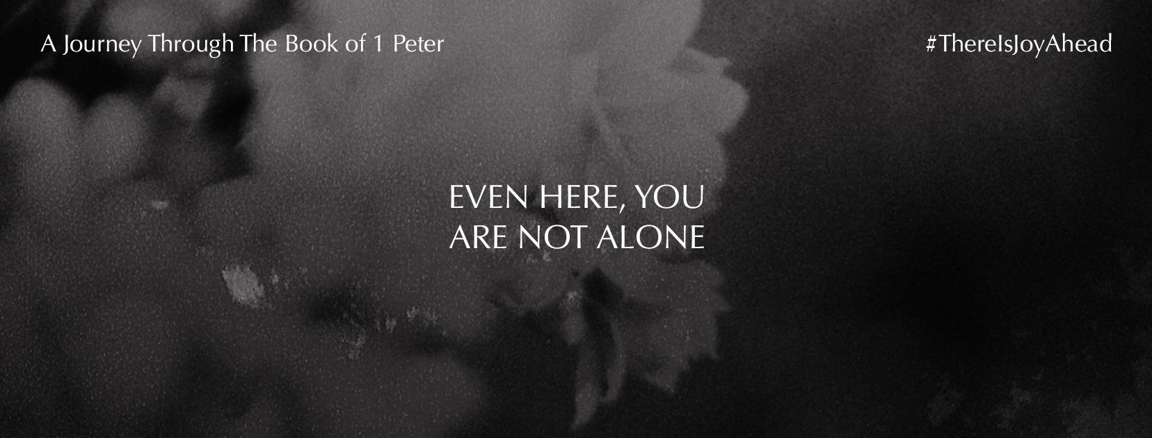 Not Alone Facebook Cover - 1656x630 (JPG)