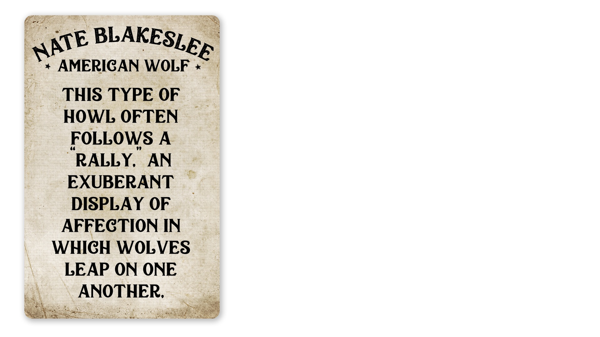 17 - American Wolf quote B (PNG)
