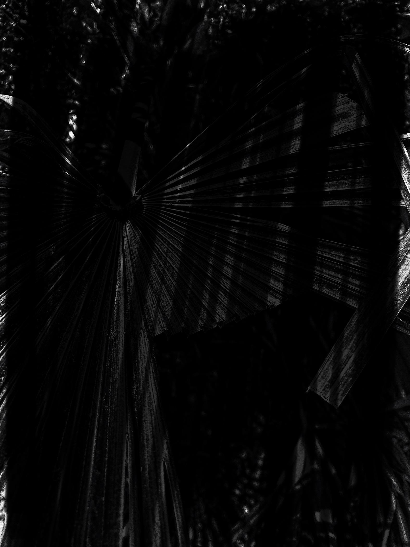 Dark Backgrounds (JPG)
