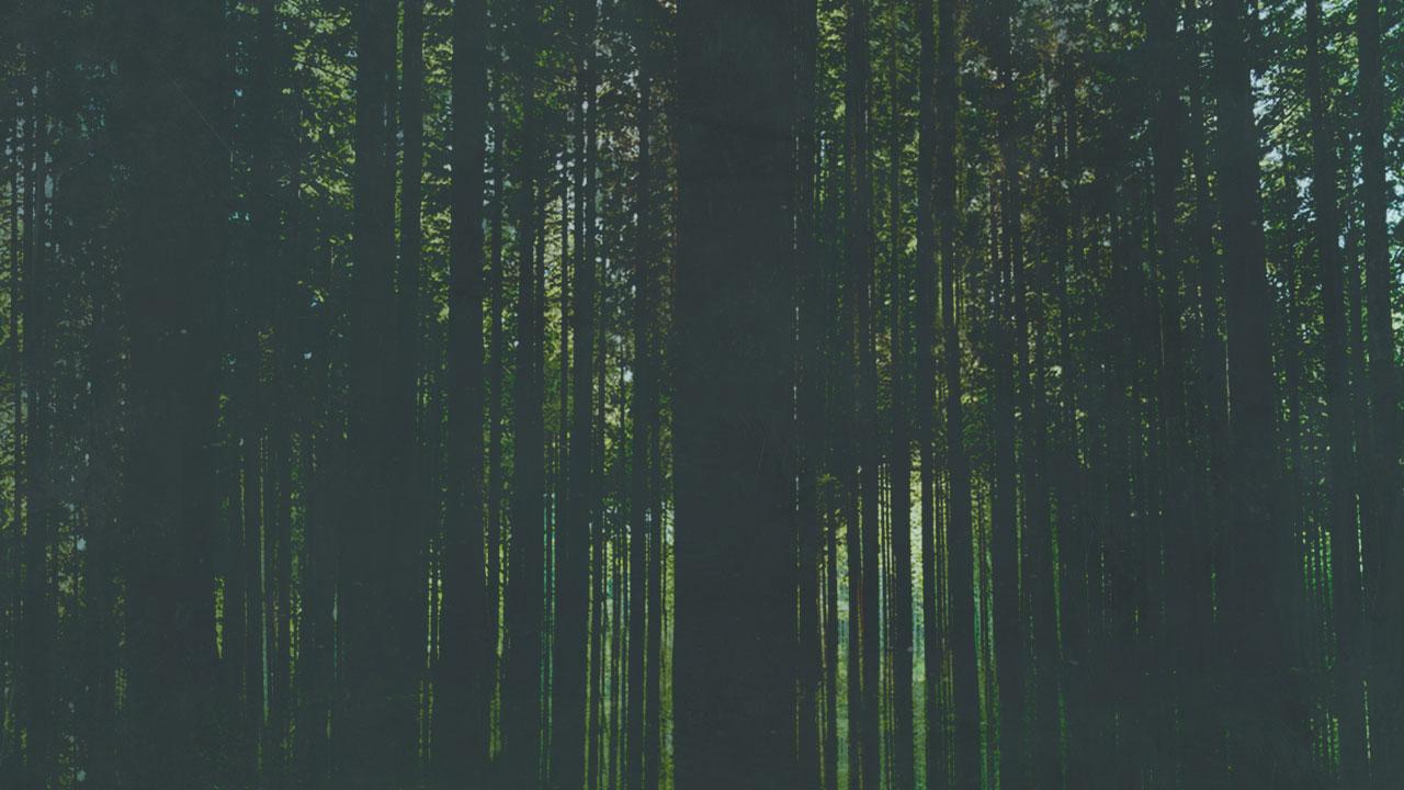 Artwork Trees 1 (JPG)