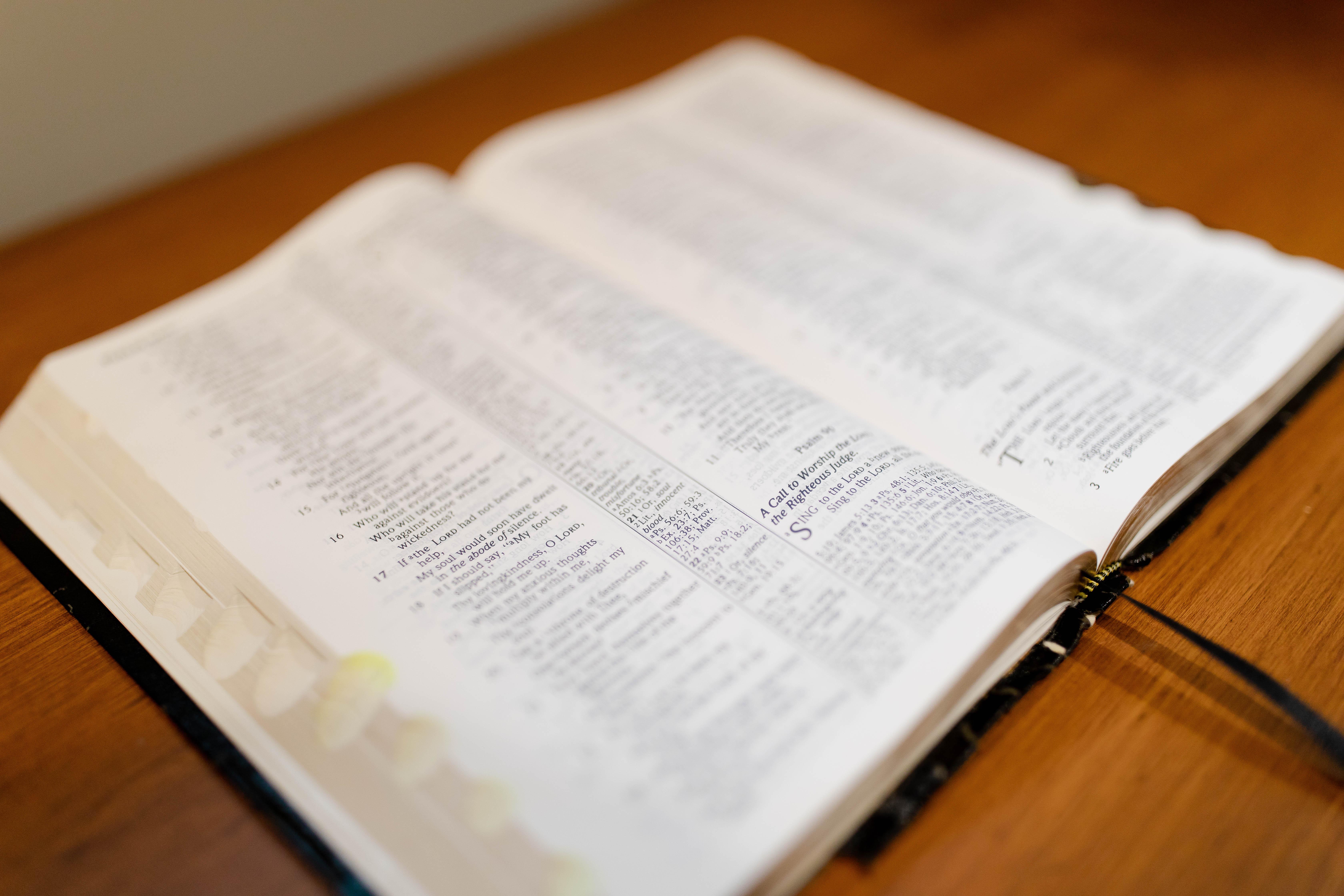 Bible Image 13 (JPG)
