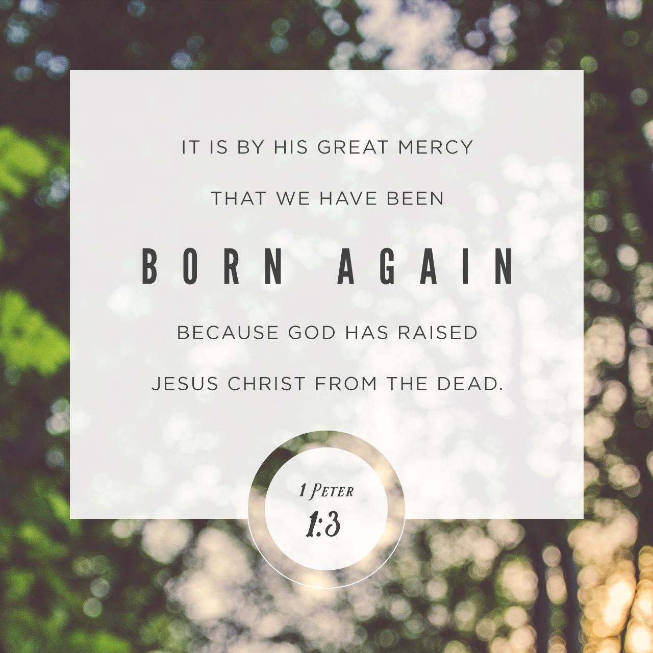 1 Peter 1:3 (JPG)
