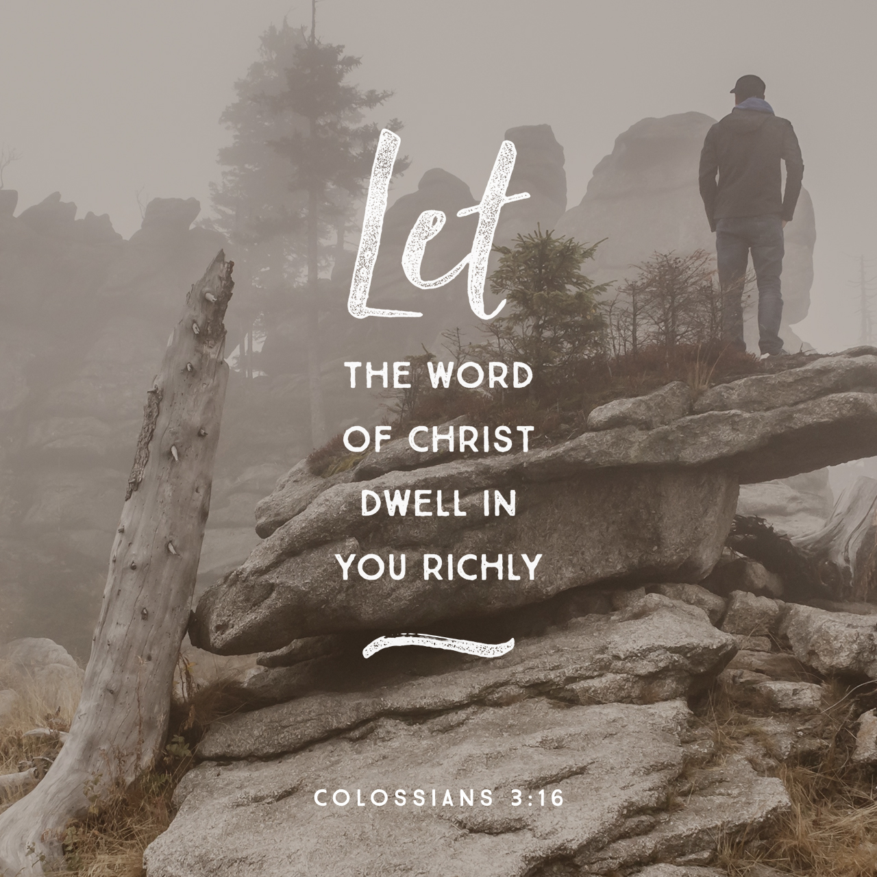 Colossians 3:16 (JPG)