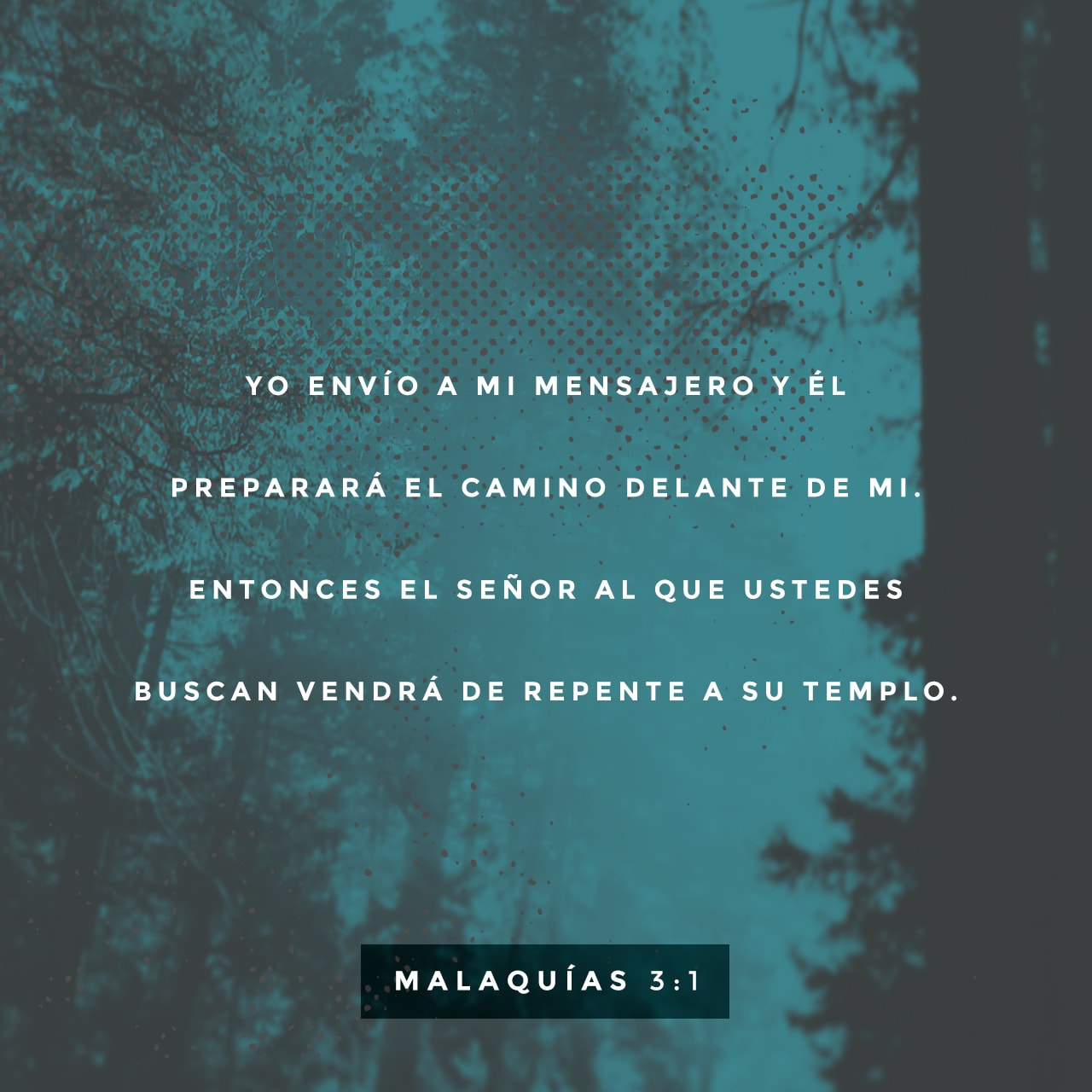 Malachi 3:1 (JPG)