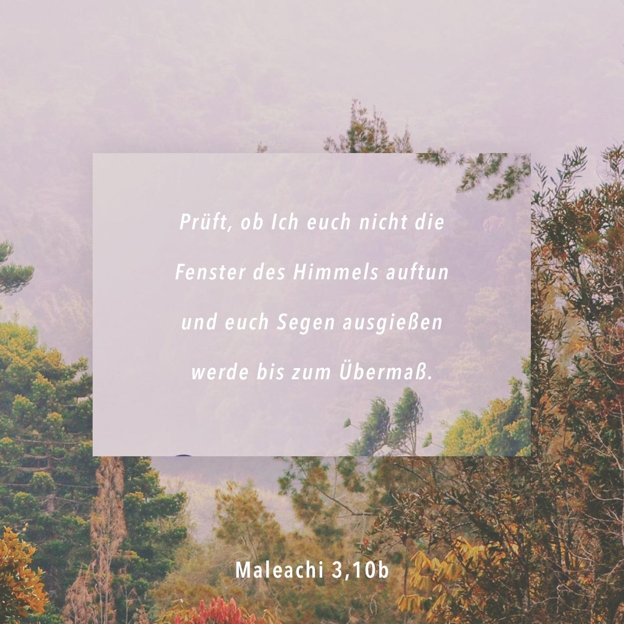 Malachi 3:10 (JPG)