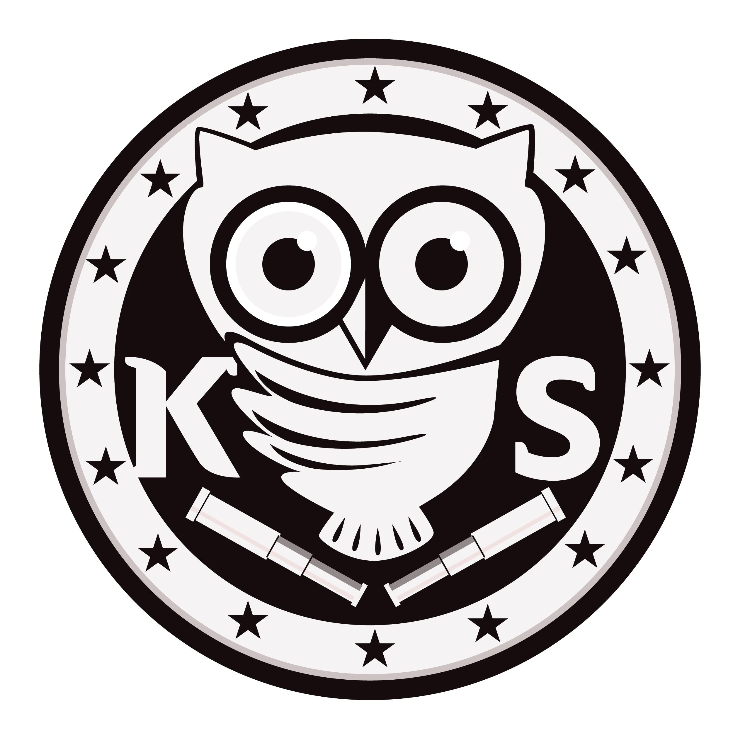 Owl Logo (PNG)